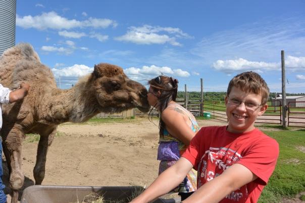 camel kisses,