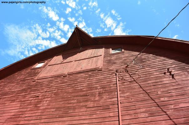 barn, country, rural, mn, cook's country connection, pajari girls, photography