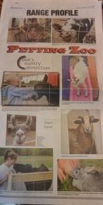 News Articles-4